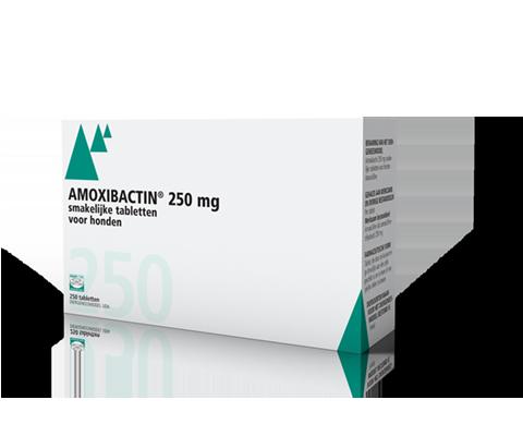 Amoxibactin 250mg