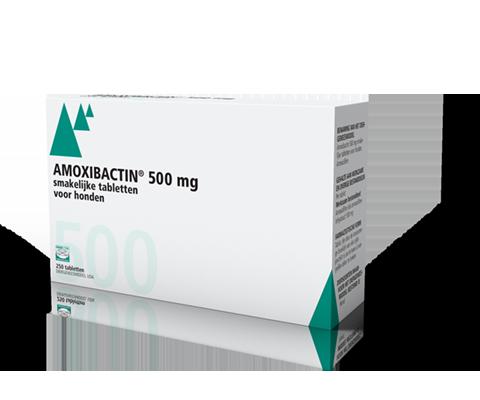 Amoxibactin 500mg