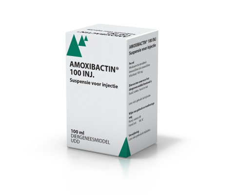 amoxibactin_100ml_inj_480x400web