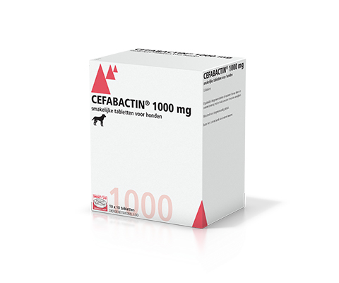 Cefabactin 1000 mg 10x10_WEB